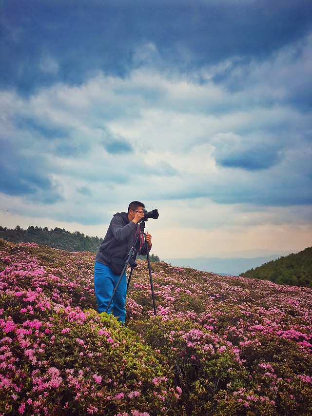 landscape-flower-sky-outdoors-travel picture material