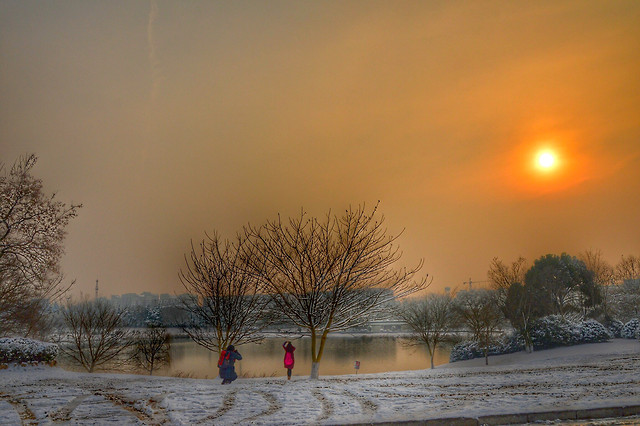 winter-snow-dawn-fog-cold picture material
