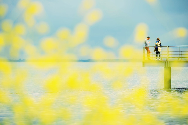 water-yellow-blur-sky-color picture material
