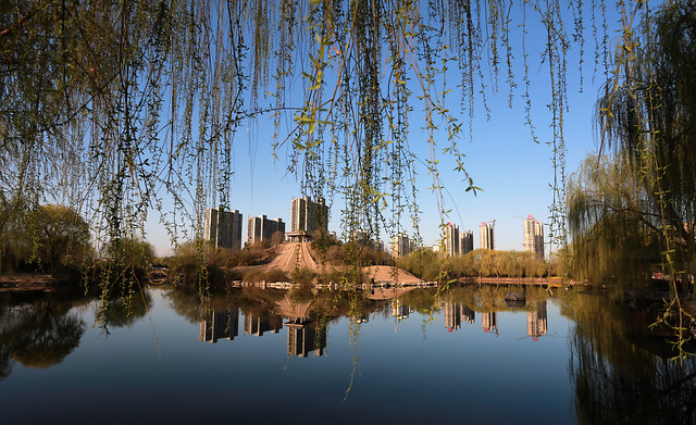 reflection-water-tree-lake-river 图片素材