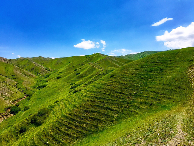 no-person-nature-landscape-highland-grassland picture material