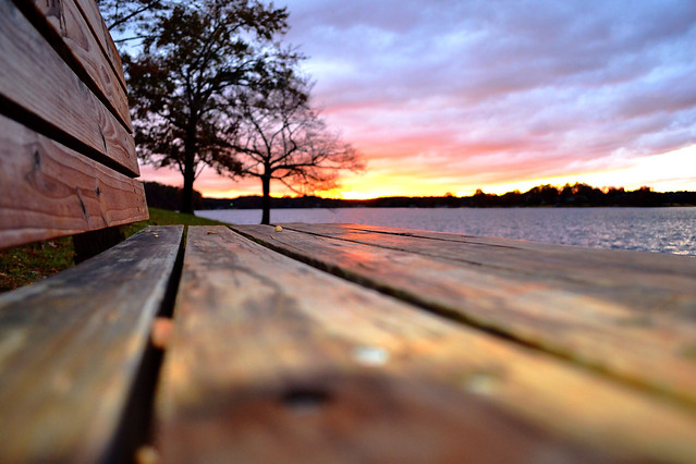 sunset-nature-landscape-wood-water picture material