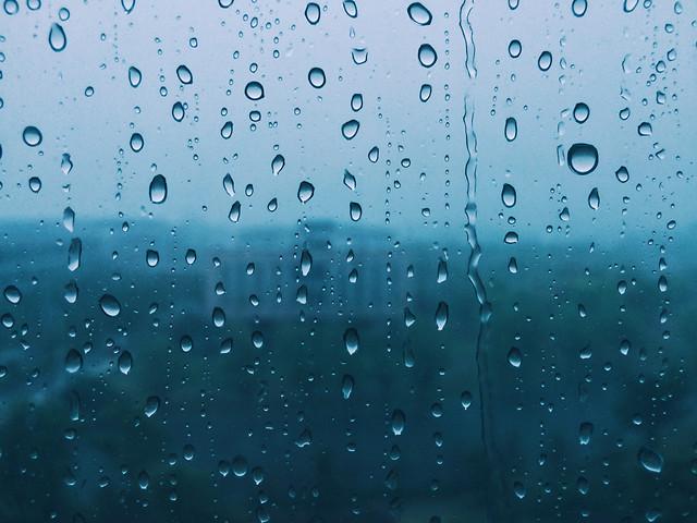 rain-wet-drop-droplet-dew picture material