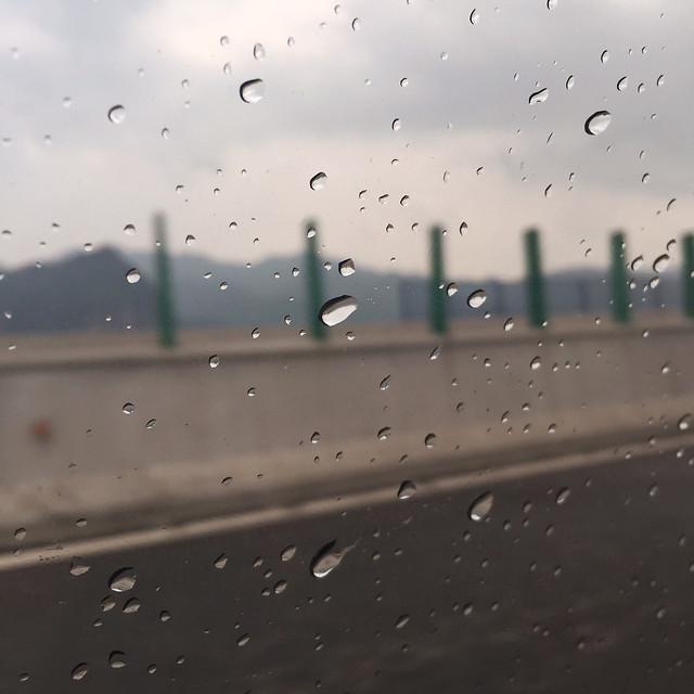 rain-drop-wet-droplet-raindrop picture material