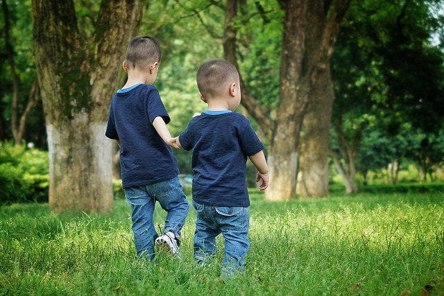 child-grass-nature-park-love picture material