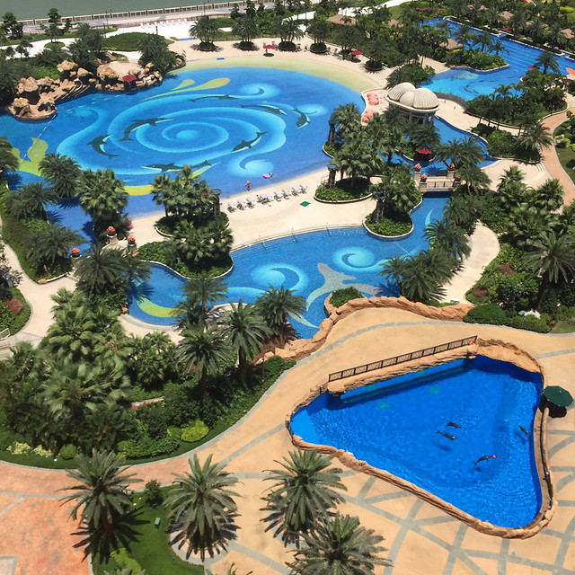 dug-out-pool-swimming-pool-resort-water-tree picture material