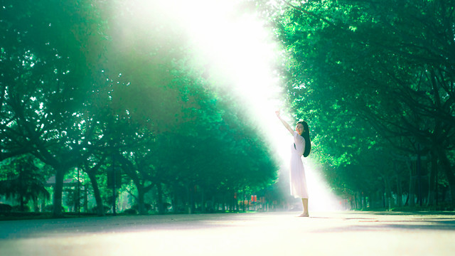 green-people-nature-light-landscape picture material
