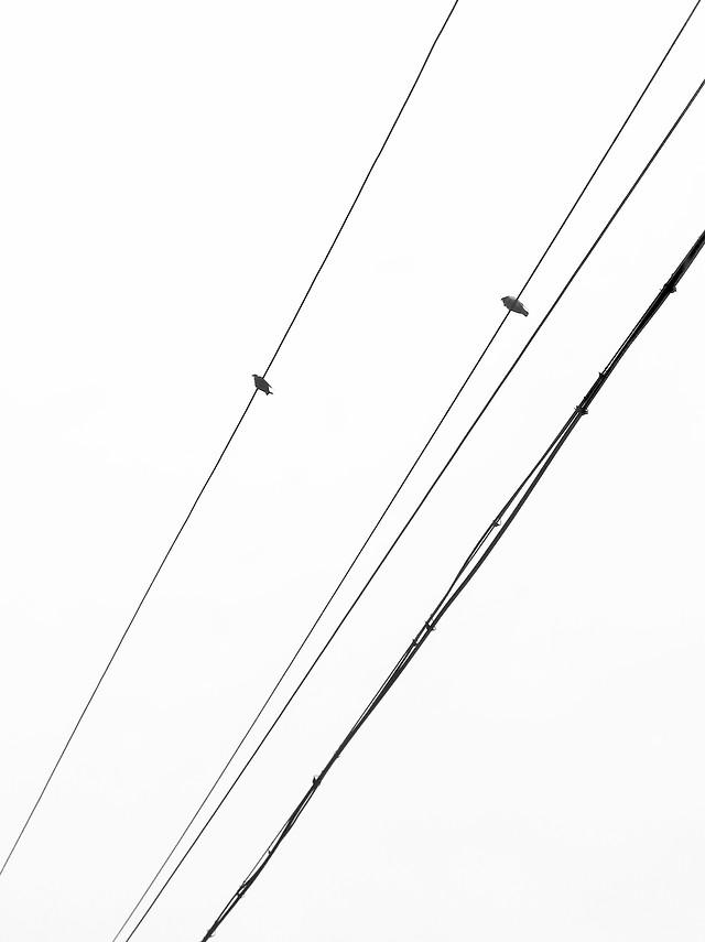 wire-line-no-person-desktop-steel picture material
