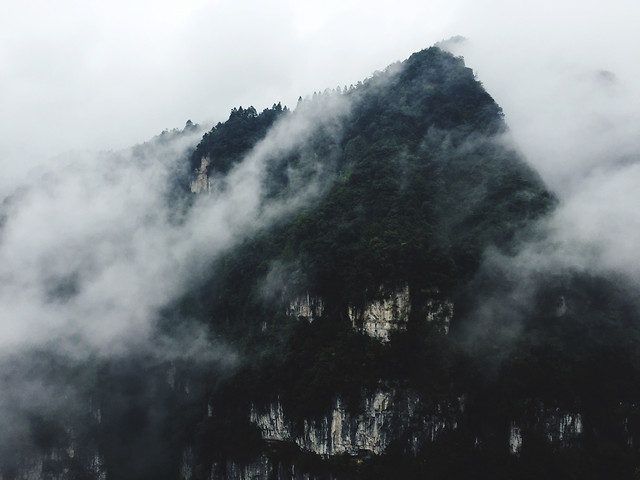 no-person-mountain-fog-volcano-tree picture material