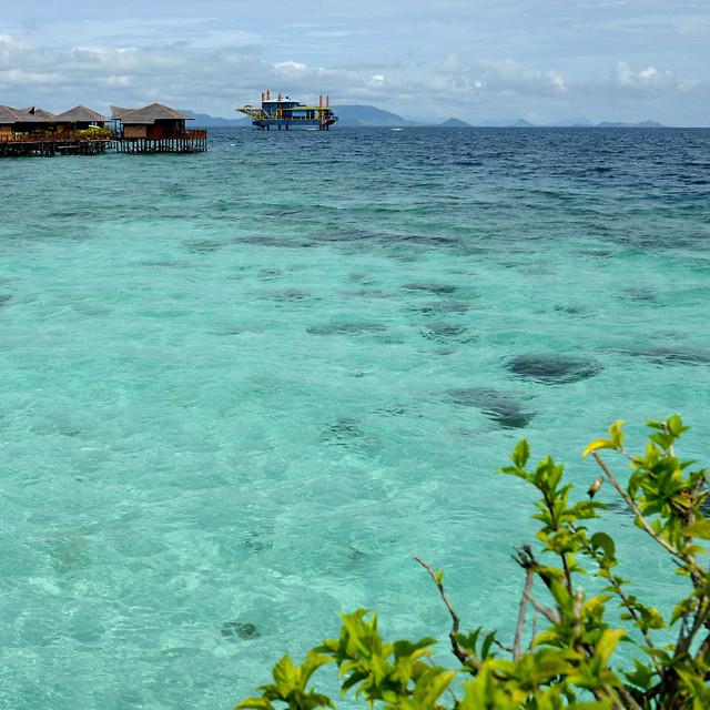 water-sea-beach-ocean-seashore picture material