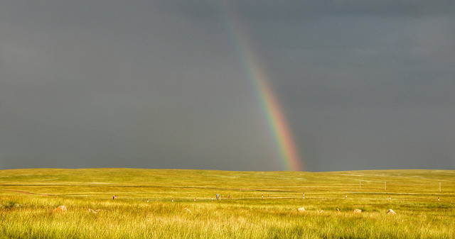 rainbow-no-person-landscape-wheat-farm picture material