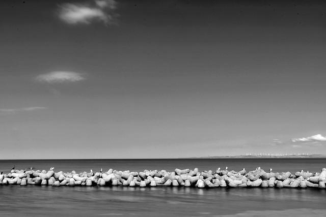 water-no-person-beach-sky-monochrome picture material