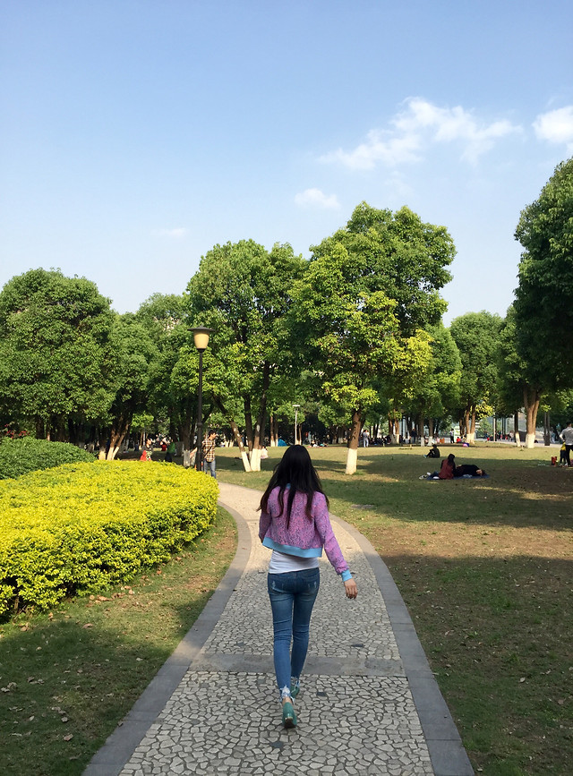 tree-park-road-people-nature picture material