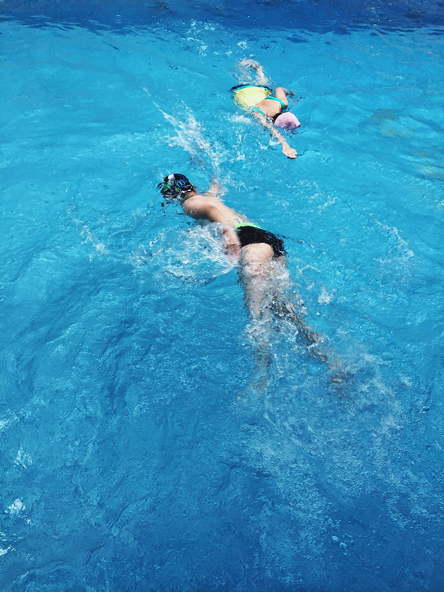 swimming-water-underwater-water-sports-recreation 图片素材
