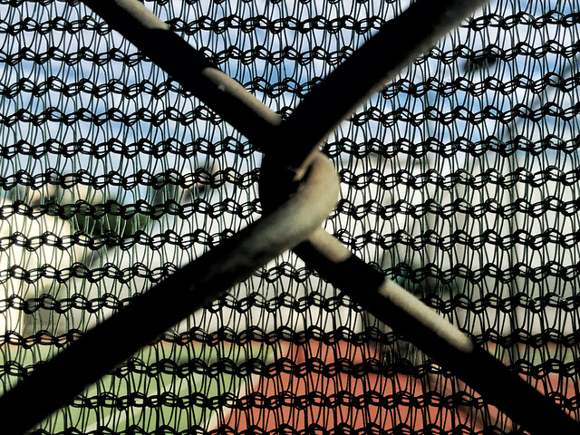 web-cage-fence-desktop-pattern picture material