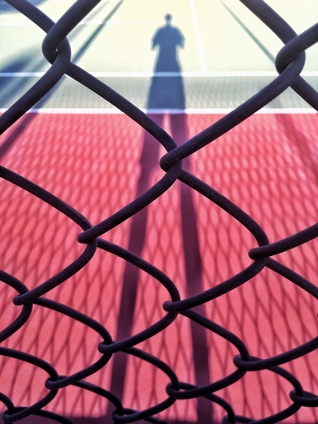 web-cage-fence-net-wire picture material