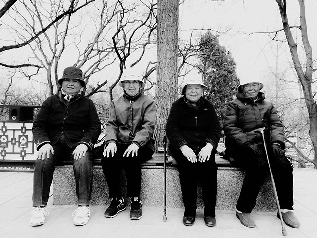 people-group-together-social-group-adult-winter picture material