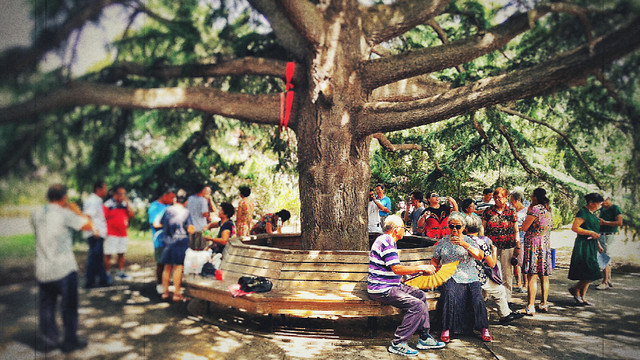 people-group-festival-tree-many picture material