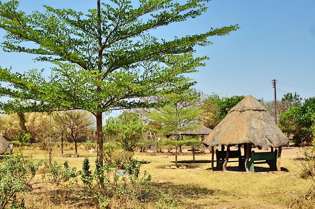 tree-hut-sky-landscape-grass 图片素材