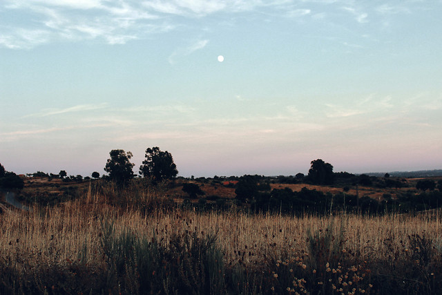 no-person-landscape-sunset-sky-dawn picture material