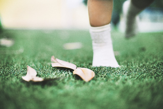 foot-grass-outdoors-blur-nature picture material