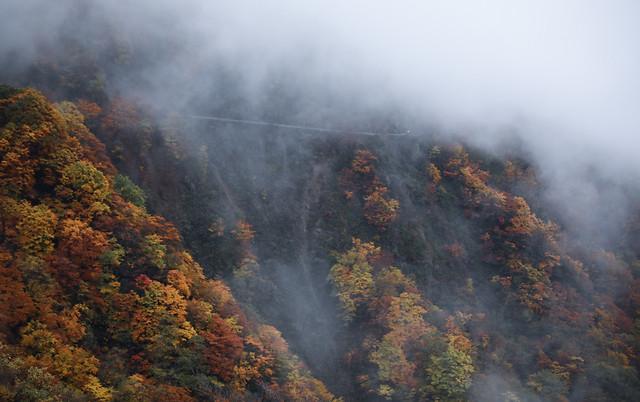 no-person-fog-mist-volcano-smoke picture material