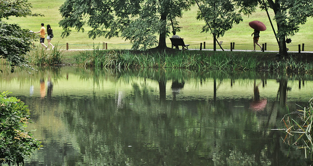 water-reflection-lake-no-person-river picture material