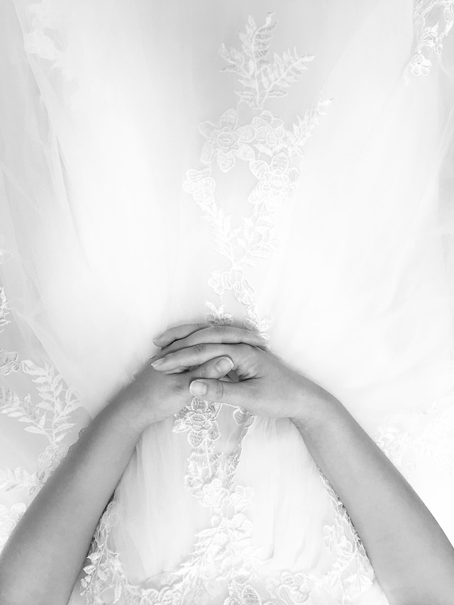 bride-wedding-woman-veil-bridal picture material
