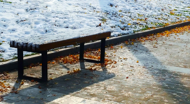 snow-winter-season-bench-cold picture material