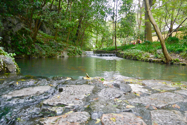 water-river-nature-no-person-stream picture material