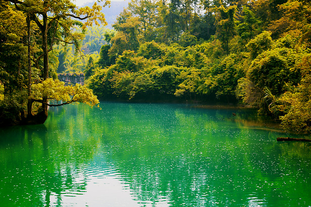 natural-landscape-nature-body-of-water-reflection-green 图片素材