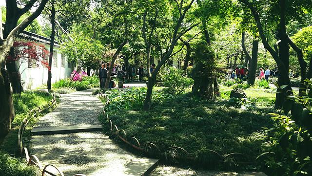 garden-park-tree-landscape-flower picture material