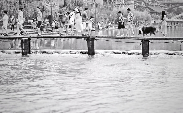 water-monochrome-people-group-together-many picture material