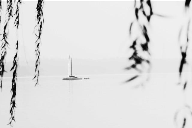 white-monochrome-black-and-white-black-monochrome-photography 图片素材