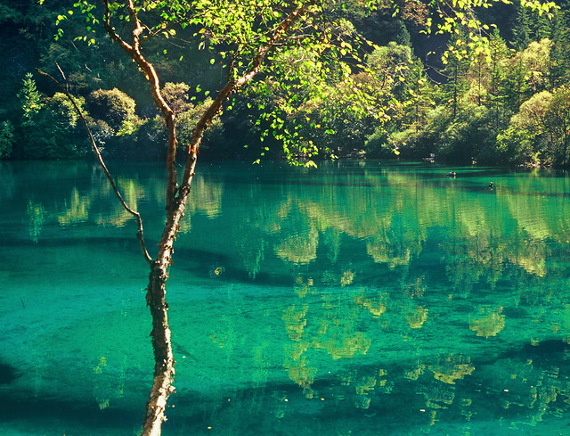 water-tropical-no-person-travel-nature picture material