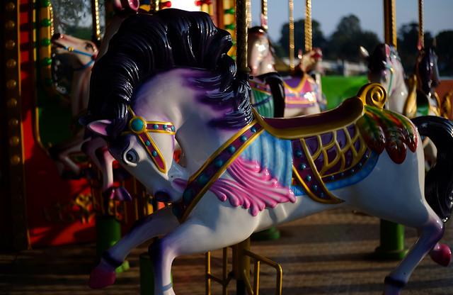 carnival-festival-carousel-entertainment-amusement-ride picture material