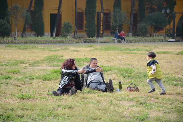 child-people-recreation-leisure-grass picture material