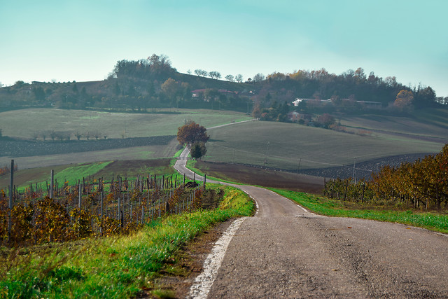 landscape-road-nature-travel-sky picture material