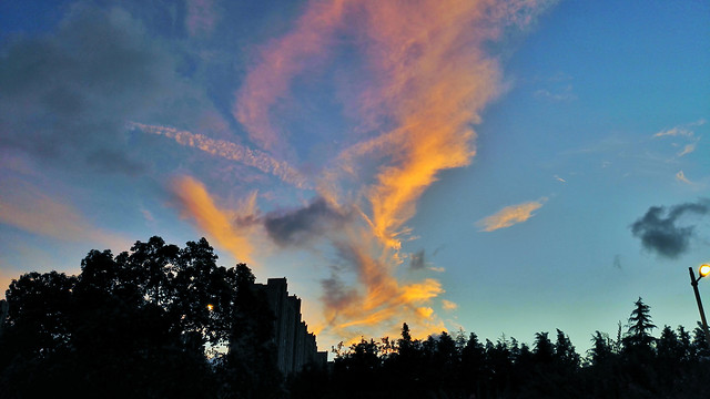 no-person-sunset-sky-daylight-cloud picture material