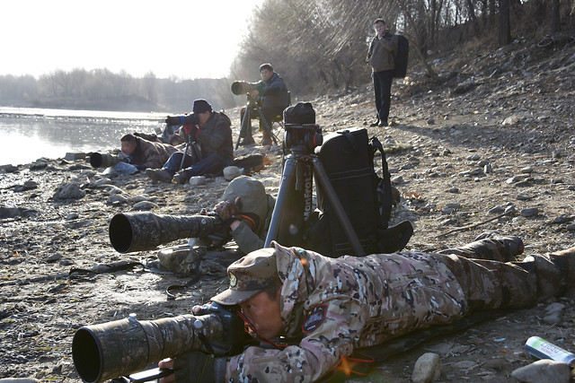 people-military-calamity-war-weapon picture material