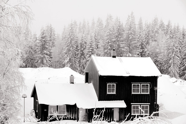 snow-winter-wood-house-bungalow picture material