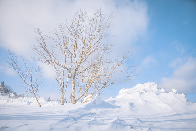 snow-winter-cold-landscape-weather 图片素材