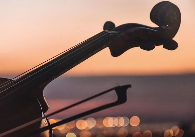 no-person-musical-instrument-string-instrument-sunset-violin-family picture material