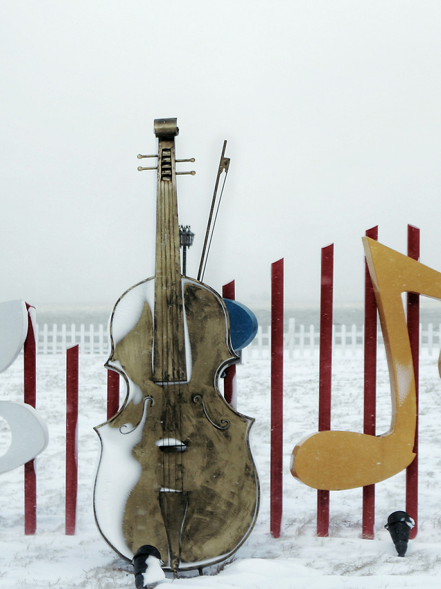 wood-no-person-instrument-classic-music picture material