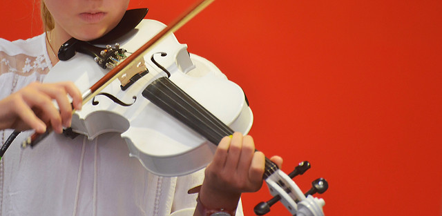 instrument-violin-music-musical-instrument-violin-family picture material
