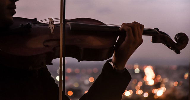 people-string-instrument-music-adult-violin picture material