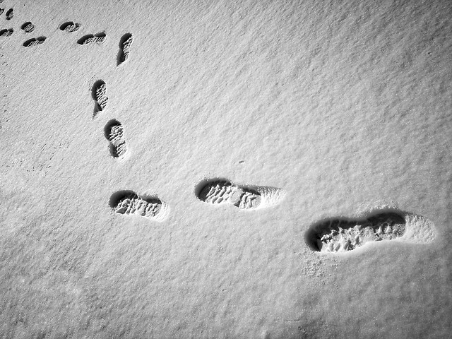 no-person-footprint-white-sand-black picture material