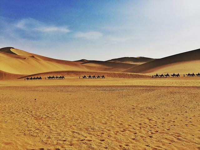 desert-sand-arid-dune-wasteland picture material