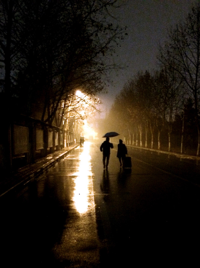 people-light-silhouette-street-dawn picture material