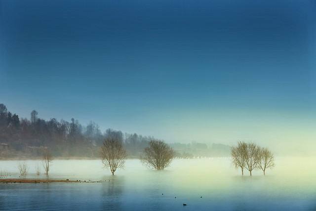 fog-mist-dawn-winter-no-person picture material